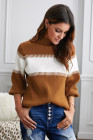 Brown Color Block High Neck Pullover Sweater