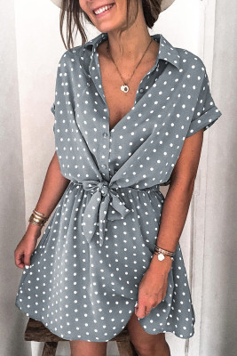 Polka Dot Shirt Collar Short Sleeve Mini Dress
